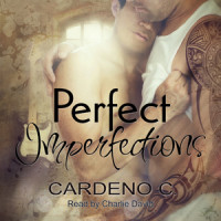 Perfect Imperfections Audio