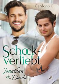Schockverliebt: Jonathan & David