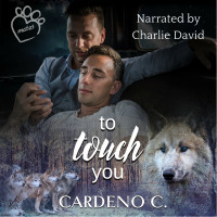 To Touch You Audio
