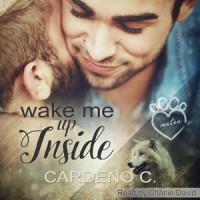 Wake Me Up Inside Audio