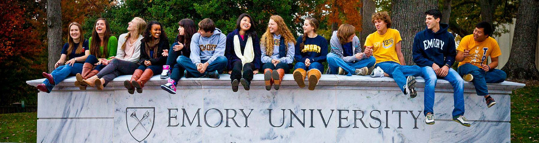 Emory University Banner