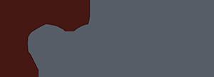Epizyme logo