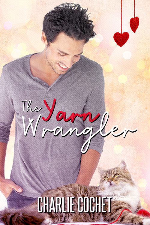 The Yarn Wrangler