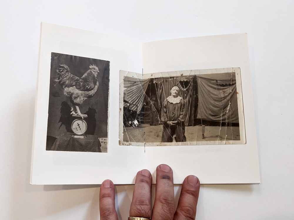 photography book about collector billy parrott