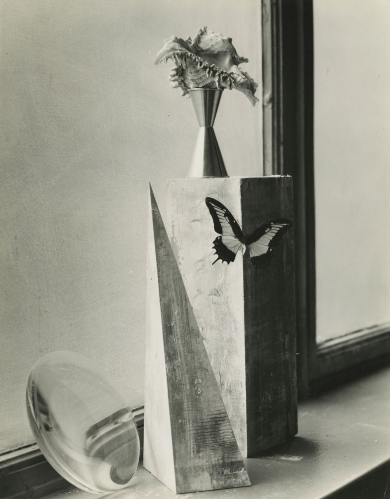 Composition of Objects on Windowsill, NYC, 1937