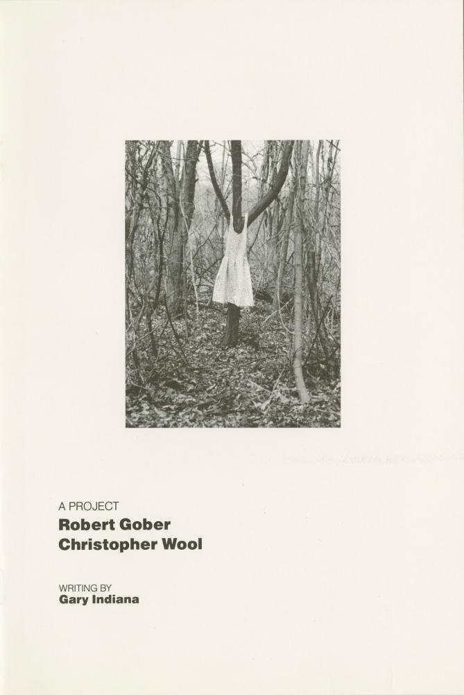 Robert Gober, Christopher Wool, A Project