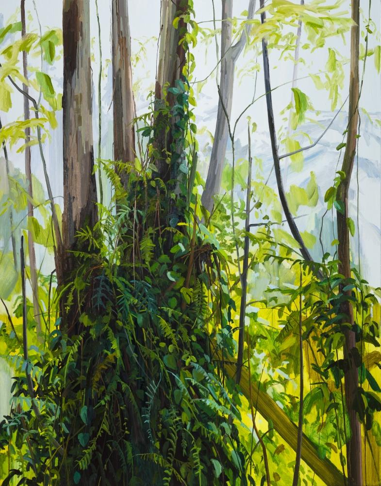 Green Series: Claire Sherman on New Pangaea