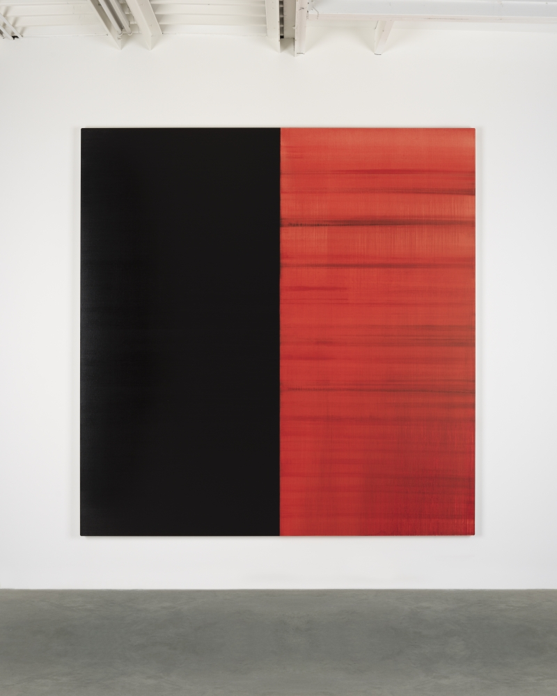 Callum Innes in #InDetail
