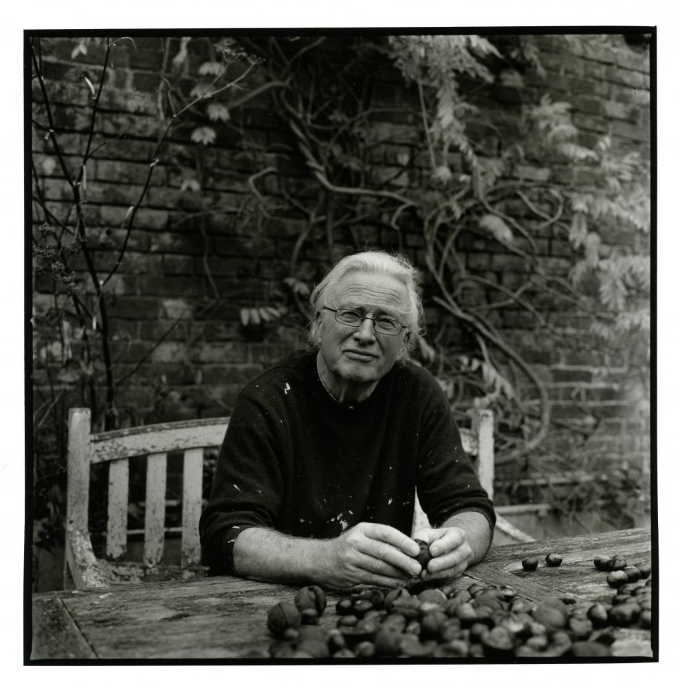 Ian McKeever biography