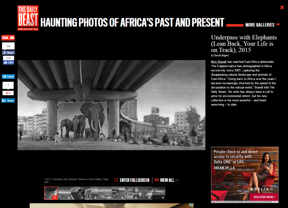 Nick Brandt: HAUNTING PHOTOS OF AFRICA'S PAST AND PRESENT - The Daily Beast