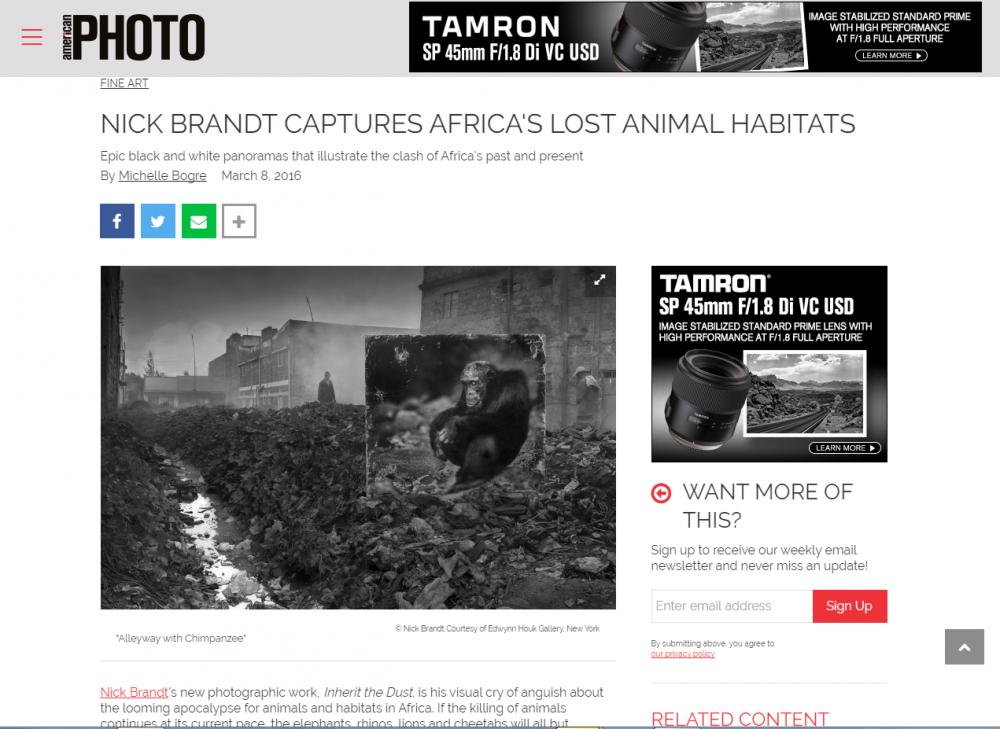 NICK BRANDT CAPTURES AFRICA'S LOST ANIMAL HABITATS - Photomag.com