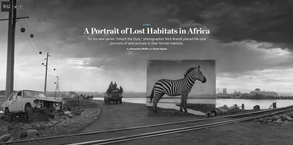 Nick Brandt: A Portrait of Lost Habitats in Africa - Wall Street Journal