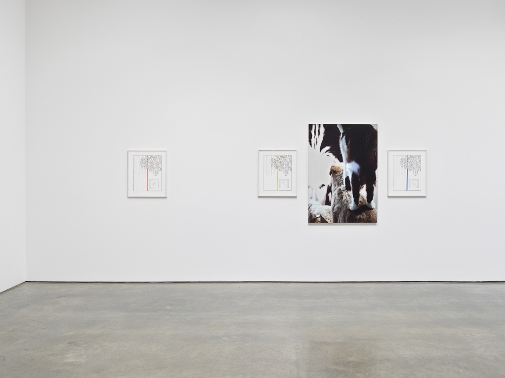 Louise Lawler, One Show on Top of the Other. Installation view, 2021. Metro Pictures, New York.