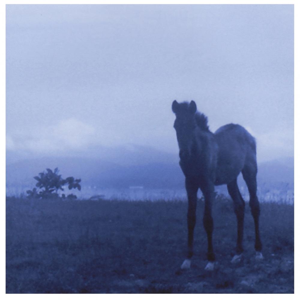 K4 5348 (matt/blue), ©2004