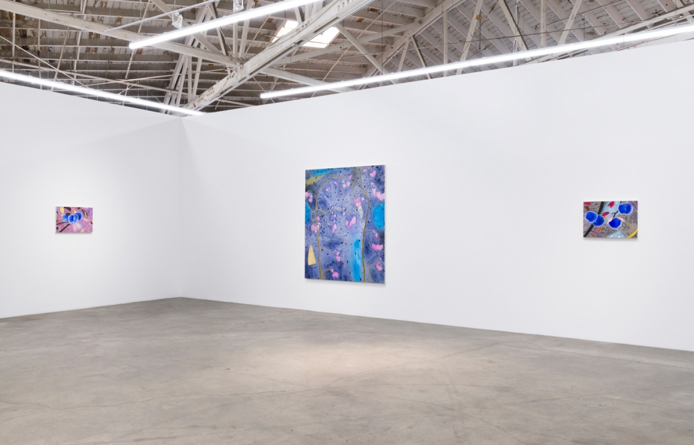 Blue Boy, Installation view at Night Gallery, 2019.