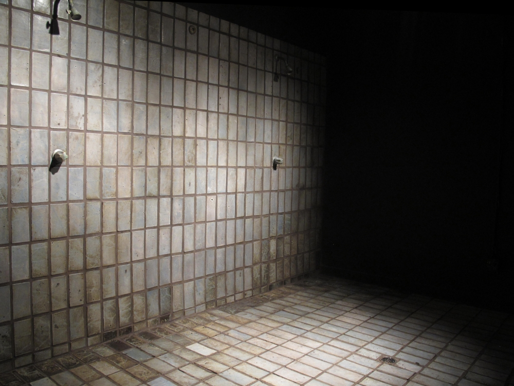 """Group Shower,"" Installation view, 2012"