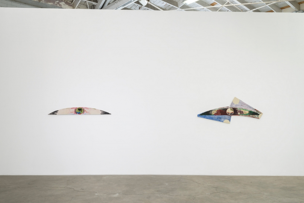 "Augustus Thompson, ""waxwing,"" installation view, 2016"