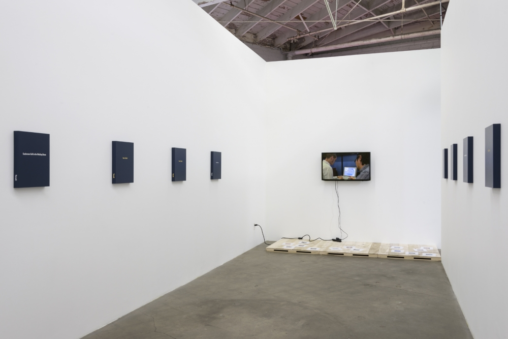 Keith J. Varadi, Free Wi-Fi, Comedy, installation view, 2016