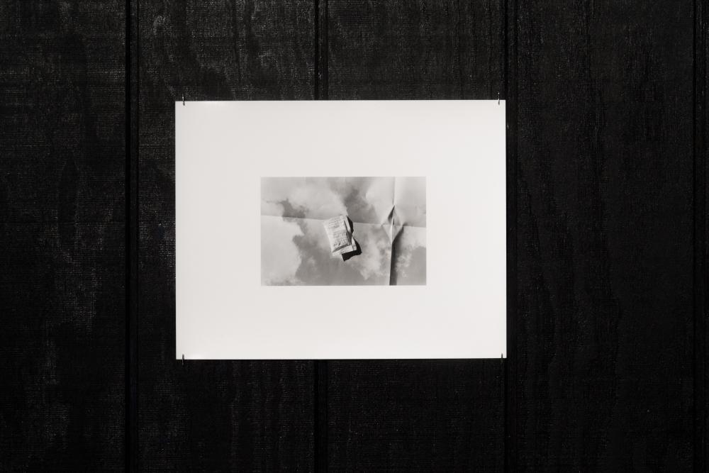 """Carter Seddon, """"Desiccant,"""" 2014."""