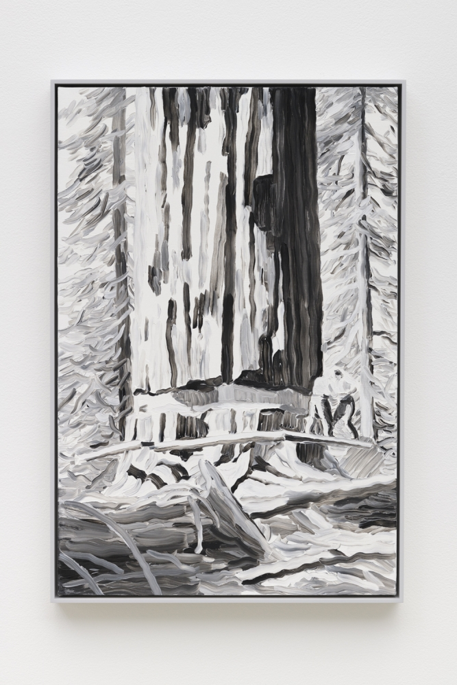 """Elegy (Redwood),"" 2019"