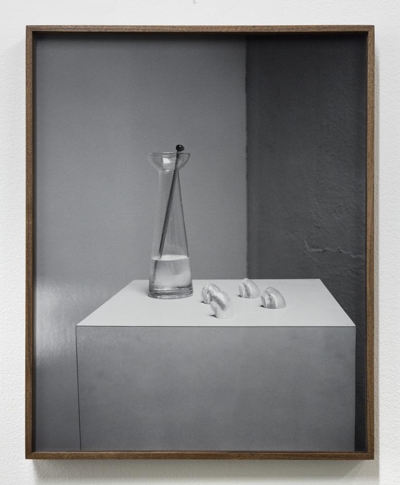 """Melanie Schiff, """"Still Shells,"""" 2018"""