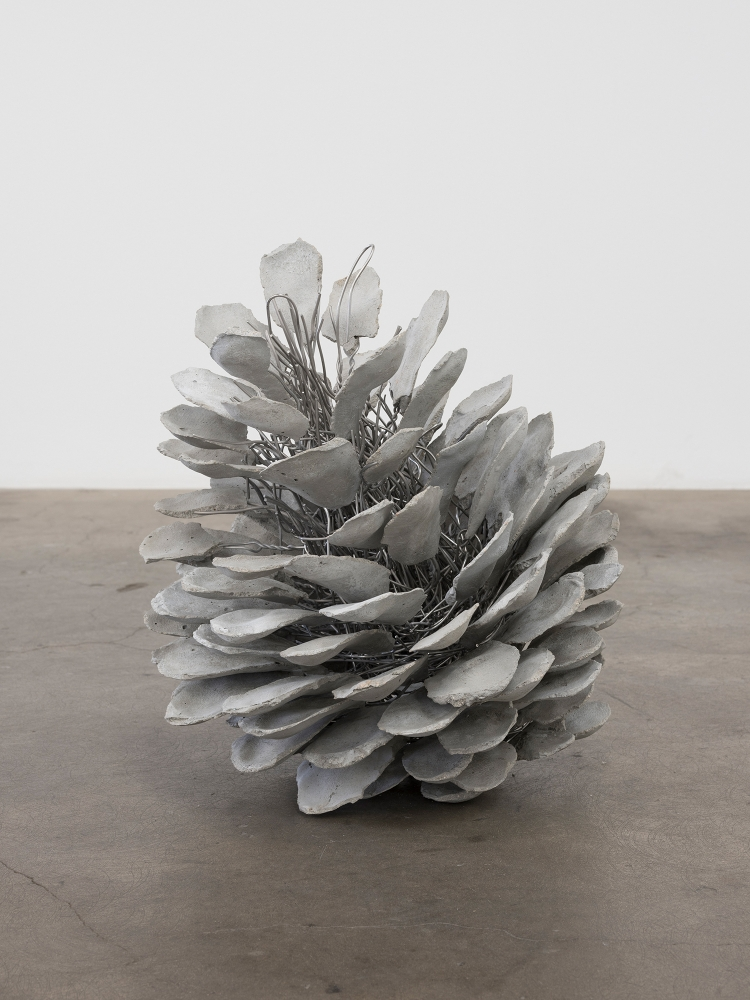 "Josh Callaghan, ""Pinecone #6,"" 2018"