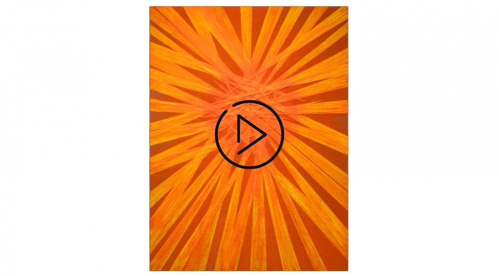 Robin Rose: 19 Paintings — VIDEO