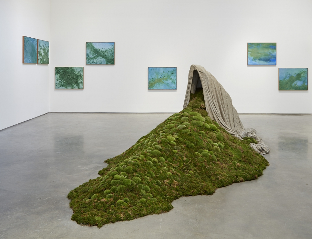 'The First Green': Ancient Life Inspires Modern Art