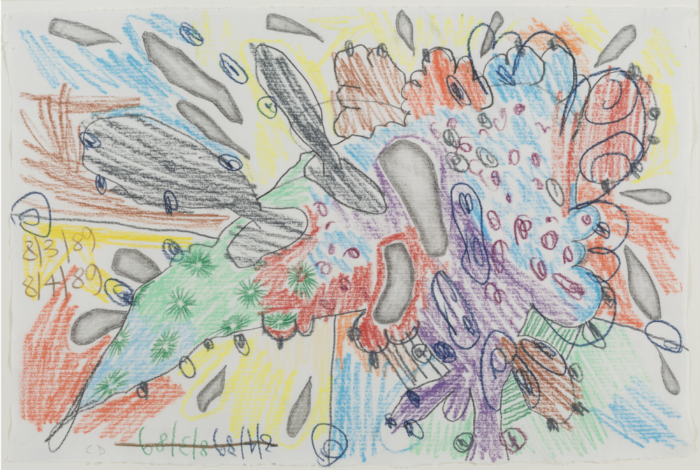 Knowledge About a Thing: Carroll Dunham's Drawings
