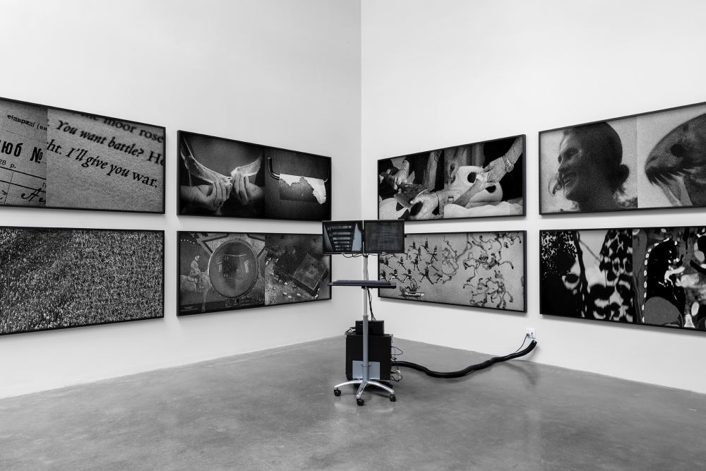 press: daniela rossell and galen jackson - on the difference between seeing and looking
