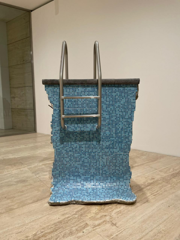 "Sofía Táboas presents ""Thermal Range"" and ""Ambient Temperature"" at Museo Jumex"
