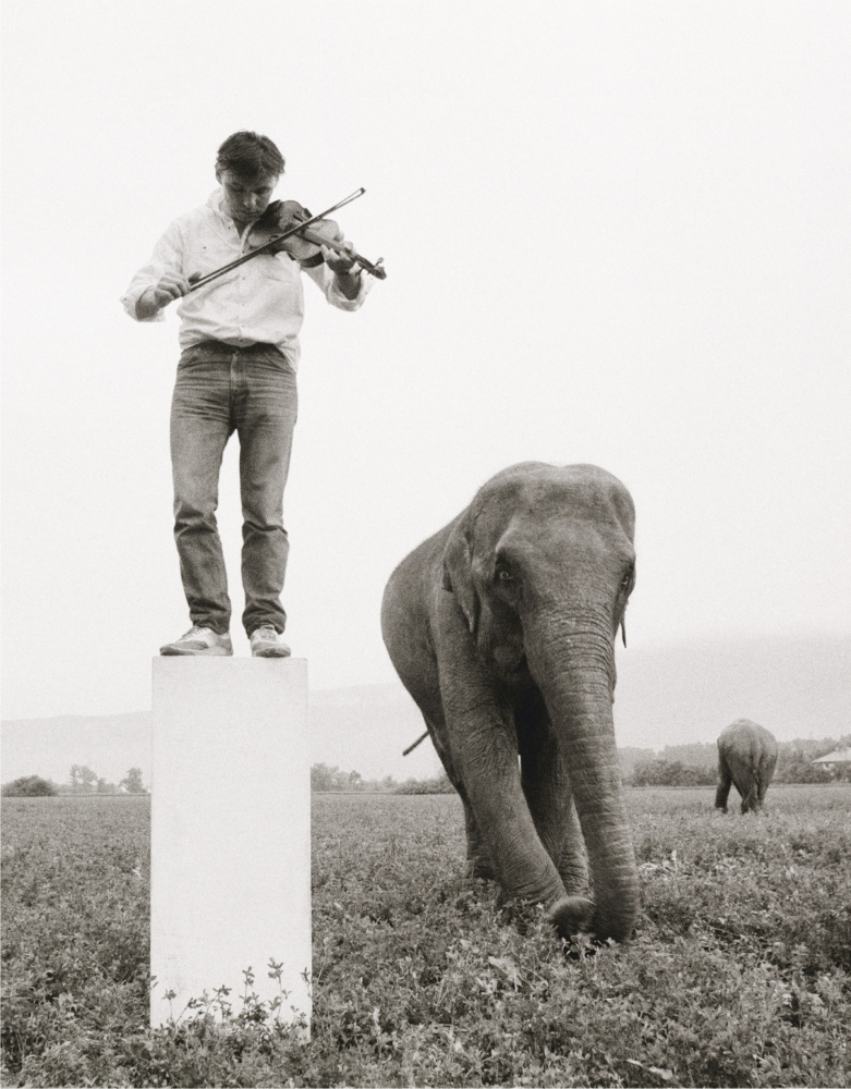 a man playing violin while standing on a pedestal in a field with two elephants nearby