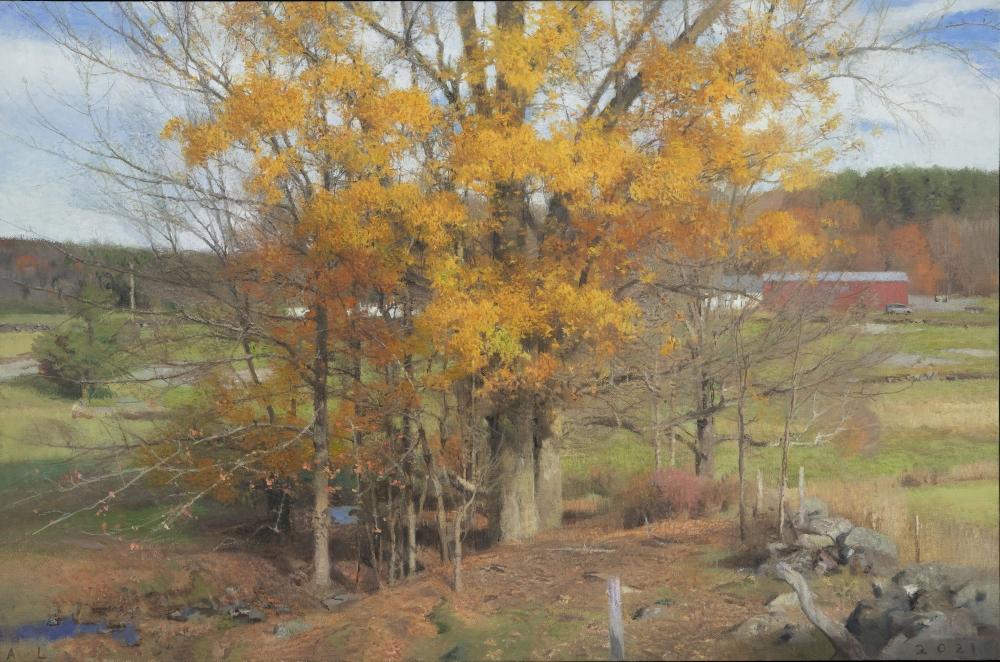"Big Oak, October"", 24"" x 36.5"", Oil On Canvas"