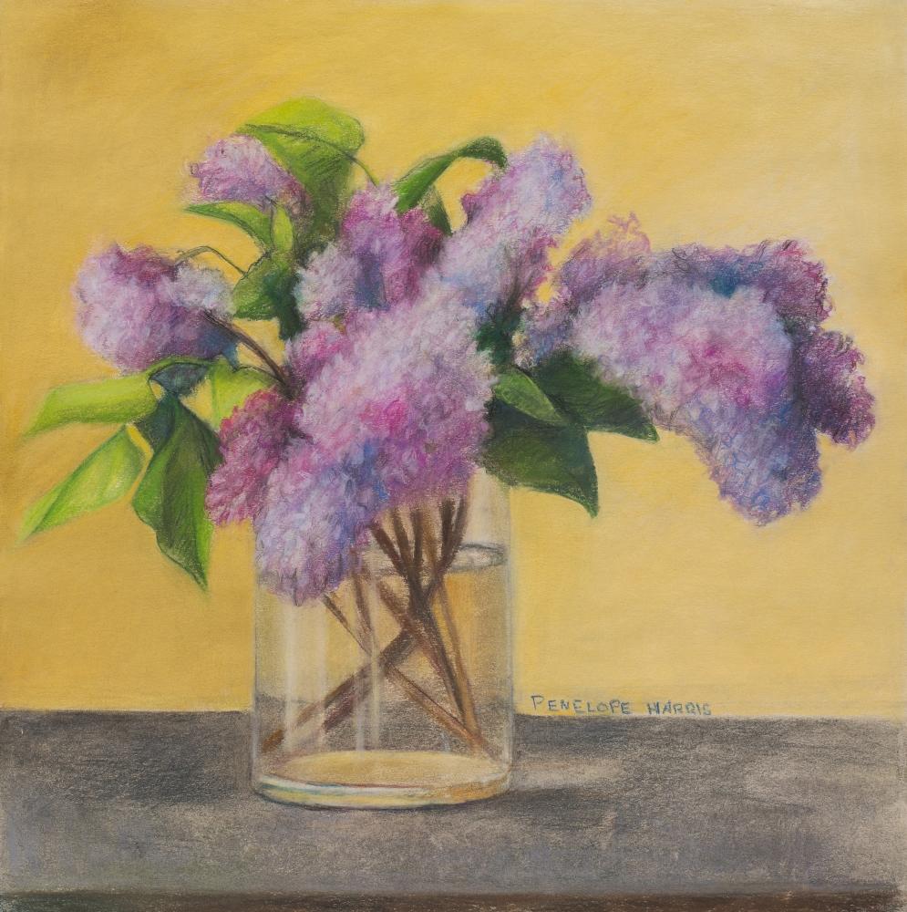 Lilac Study, Penelope Harris, Pastel