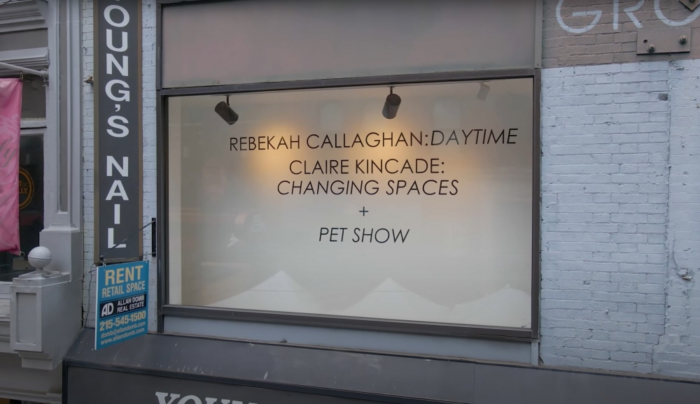 Video Walkthrough: Rebekah Callaghan: Daytime + Claire Kincade:  Changing Spaces + Pet Show