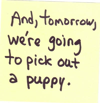 Joe Ovelman_Post-It Series 3 (and, tomorrow, we're going to pick out a puppy)