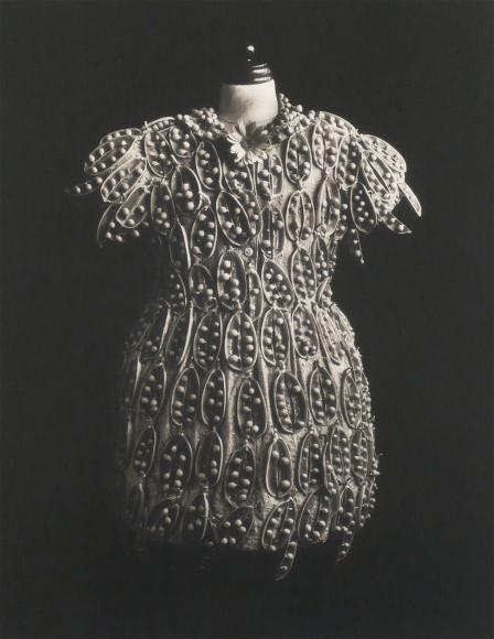 Michiko Kon, Peas and Dress, 1993