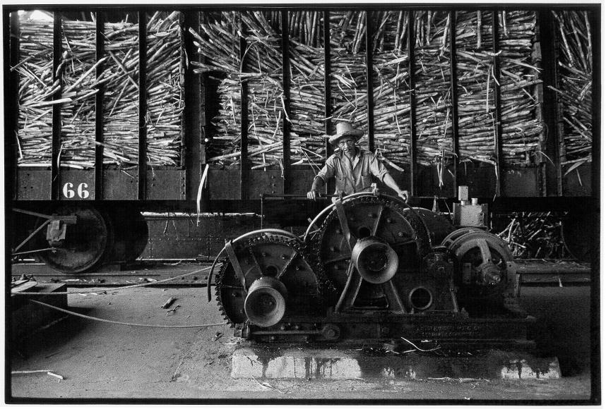 BW-103 Sugar Cane Wagon-2.jpeg