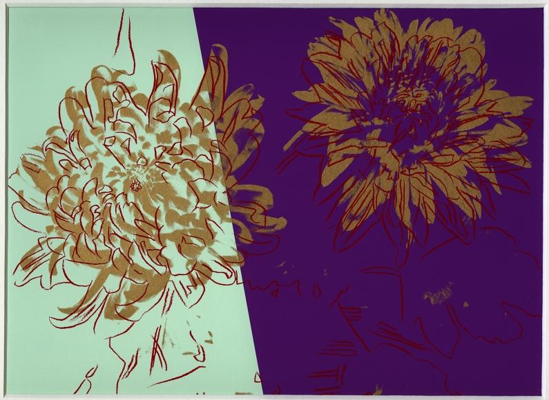 Kiku Flower - Warhol