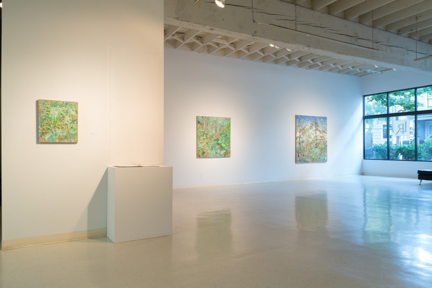 New Views 2016 Amory Abbott Bethany Hays Christopher Russell Installation view 05