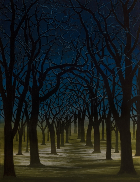 Stotik - rows of trees