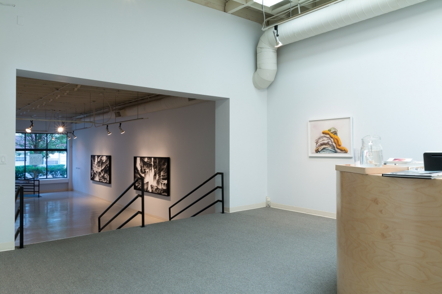 New Views 2016 Amory Abbott Bethany Hays Christopher Russell Installation view 07