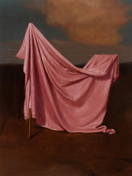 Untitled (rose drape)