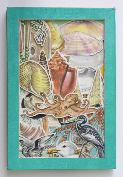 James Allen Book Excavation: Seashores