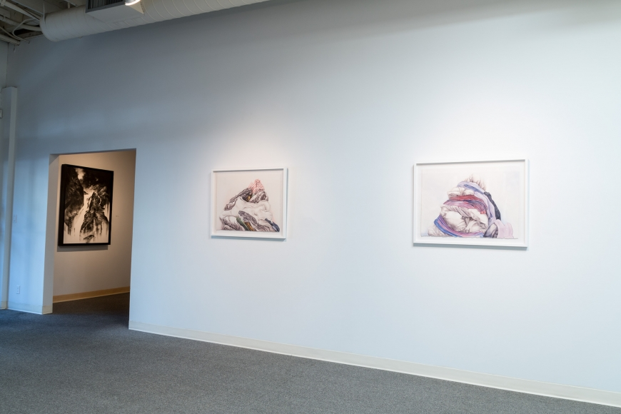 New Views 2016 Amory Abbott Bethany Hays Christopher Russell Installation view 08