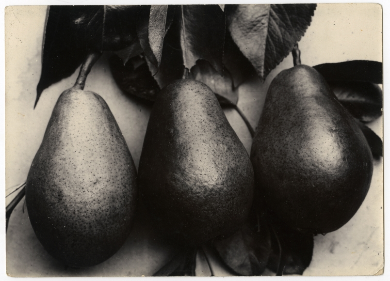 Charles Jones 2006 howard greenberg gallery