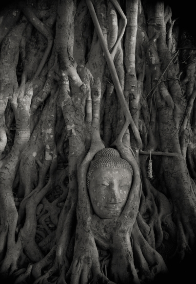 Ayutthaya #36, Thailand, 1998  Platinum palladium print; printed 2004   Image size: 19 x 13 inches   Paper size: 21 3/4 x 16 3/4 inches   From an edition of 20  Signed, dated, numbered, and negative number in pencil on print recto. Photographer's stamp with signature, title, negative number, print date, and edition number in ink on mount verso.   $3,500.0