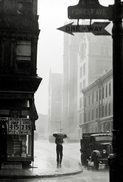 Harold Roth - Forest Avenue, The Bronx, 1937 - Howard Greenberg Gallery