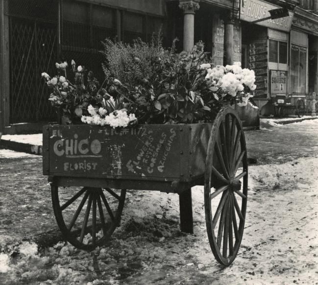 Leo Goldstein - Florist's Cart, East 100th Street, 1951- Howard Greenberg Gallery