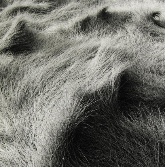 Eric Lindbloom - Salt Marsh Grass #49, Wellfleet, MA, 2006 - Howard Greenberg Gallery